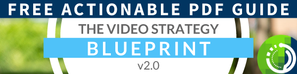 The-Video-Strategy-Blueprint-Inline
